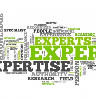 How to Make Your Expertise Available to Clients Online
