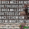 The brick walls are not there to keep us out – The brick walls are there to give us a chance to show how badly we want something